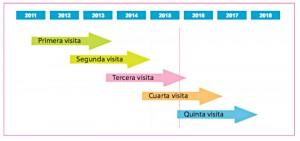 Gráfico Proyecto Vallecas